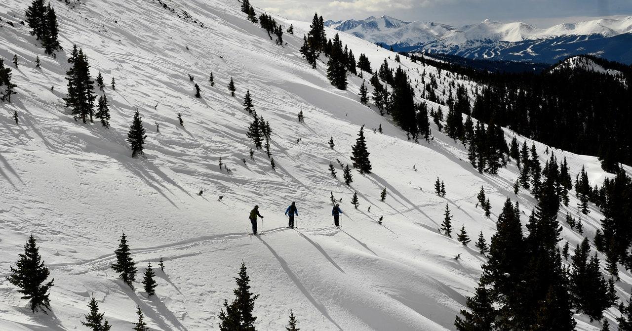 Los rescatistas de la naturaleza se preparan para un duro invierno Covid-19