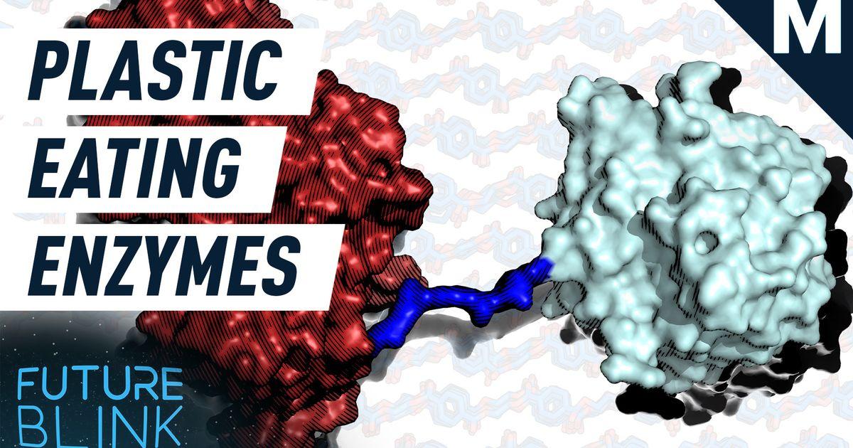 """Los científicos hicieron una enzima """"cóctel"""" que pueden digerir los desechos plásticos - Future Blink"""