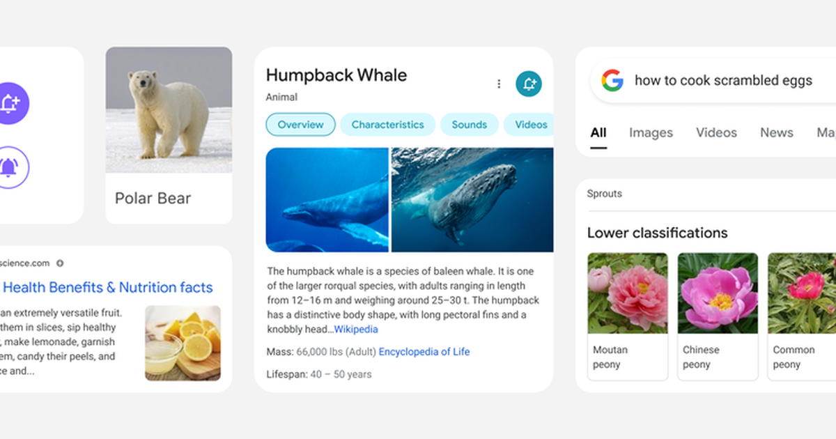 La búsqueda móvil de Google se está renovando para el nuevo año