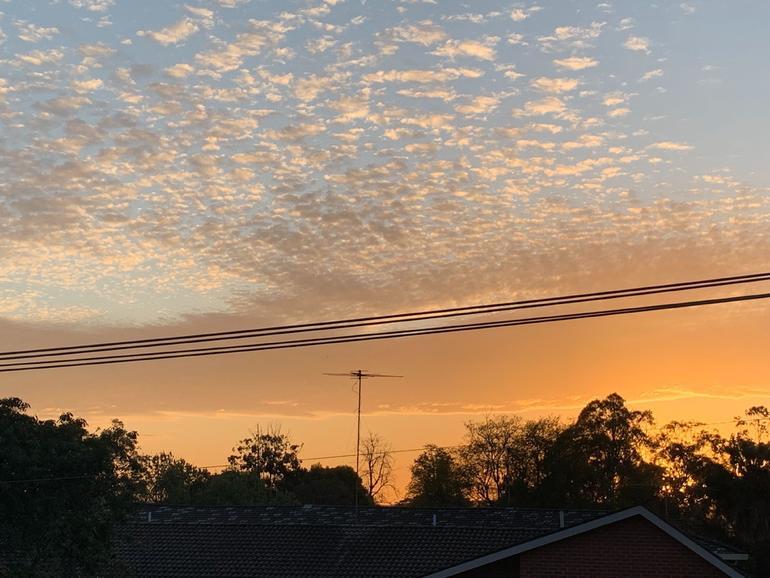 El uso de banda ancha de Kiwi creció un 37% durante el pico de la pandemia